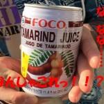 【群馬県大泉町観光記】ブラジル人向けスーパー「タカラ」で見つけたタマリンドジュースが悶絶不可避だった件