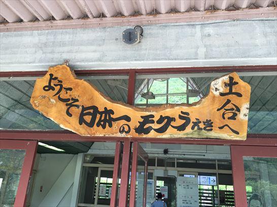 土合駅モグラ駅36_R